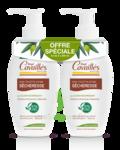 Acheter Rogé Cavaillès Hygiène intime Soin naturel Toilette Intime Sécheresse 2Fl/250ml à AMBARÈS-ET-LAGRAVE