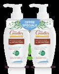 Acheter Rogé Cavaillès Hygiène intime Soin naturel Toilette Intime Anti-bactérien 2Fl/250ml à AMBARÈS-ET-LAGRAVE