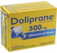 DOLIPRANE 500 mg Poudre pour solution buvable en sachet-dose B/12 à AMBARÈS-ET-LAGRAVE