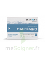 GRANIONS DE MAGNESIUM 3,82 mg/2 ml S buv 30Amp/2ml à AMBARÈS-ET-LAGRAVE