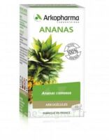 Arkogélules Ananas Gélules Fl/45 à AMBARÈS-ET-LAGRAVE