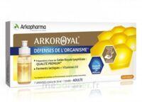 Arkoroyal Défenses Naturelles Gelée adulte 7 Doses/10ml à AMBARÈS-ET-LAGRAVE