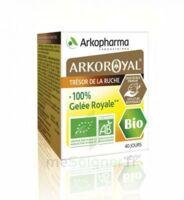 Arkoroyal 100% Gelée royale bio Gelée Pot/40g à AMBARÈS-ET-LAGRAVE
