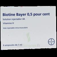 BIOTINE BAYER 0,5 POUR CENT, solution injectable I.M. à AMBARÈS-ET-LAGRAVE