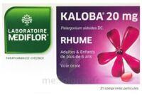 KALOBA 20 mg Comprimé pelliculé Plq/21 à AMBARÈS-ET-LAGRAVE