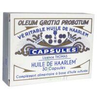 Huile de Haarlem B/30 à AMBARÈS-ET-LAGRAVE