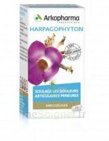 ARKOGELULES HARPAGOPHYTON, 45 gélules à AMBARÈS-ET-LAGRAVE