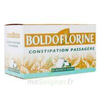 BOLDOFLORINE, mélange de plantes pour tisane en sachet-dose B/24 à AMBARÈS-ET-LAGRAVE