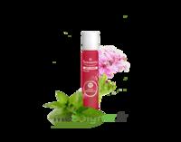 PURESSENTIEL ANTI-PIQUE Roller 11 huiles essentielles à AMBARÈS-ET-LAGRAVE