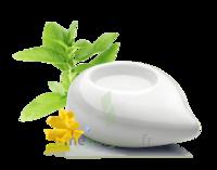 PURESSENTIEL DIFFUSION Diffuseur à chaleur douce céramique blanc à AMBARÈS-ET-LAGRAVE