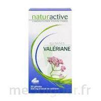 ELUSANES VALERIANE 200 mg, gélule Pilul/30 à AMBARÈS-ET-LAGRAVE