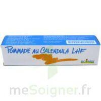 CALENDULA LHF POM T/20G à AMBARÈS-ET-LAGRAVE