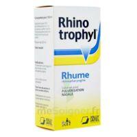 RHINOTROPHYL Solution pour pulvérisation nasale 1Fl/12ml à AMBARÈS-ET-LAGRAVE
