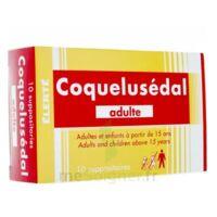 COQUELUSEDAL ADULTES, suppositoire à AMBARÈS-ET-LAGRAVE