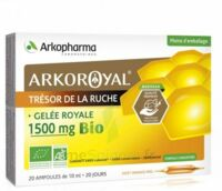 Arkoroyal Gelée royale bio 1500 mg Solution buvable 20 Ampoules/10ml à AMBARÈS-ET-LAGRAVE