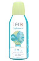 Léro Hydracur Solution buvable 2*450ml à AMBARÈS-ET-LAGRAVE