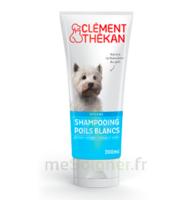 Clément Thékan Shampooing poils blancs T/200ml à AMBARÈS-ET-LAGRAVE