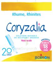 Boiron Coryzalia Solution buvable unidose B/20 à AMBARÈS-ET-LAGRAVE