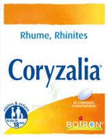 Boiron Coryzalia Comprimés orodispersibles à AMBARÈS-ET-LAGRAVE